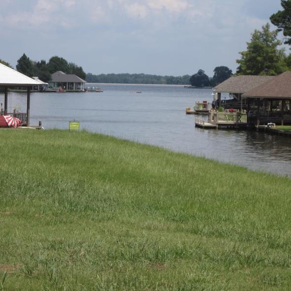 134 Lake Ridge    Lake Caroline      Waterfront lot